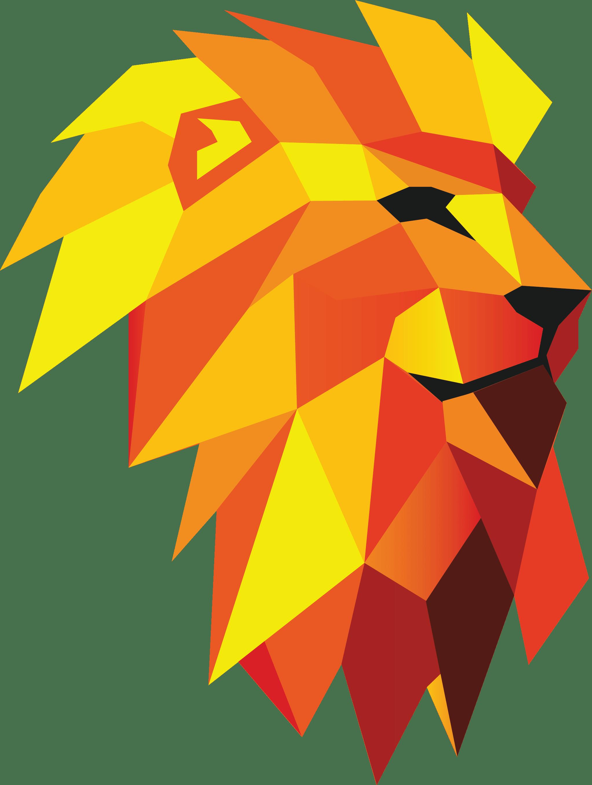lioneR - Digitális Ügynökség | weboldal készítés, webáruház készítés, webfejlesztés